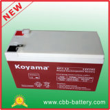 20hr Rate 7ah Lead Acid UPS Battery Price 12V7ah (NP7-12)