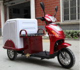 Wholesale 60V800W 3 Wheel Electric Delivery Mini Cargo Tricycle with Closed Box