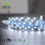 3 Years Guarantee Highlight 12W 60LED 2835 LED Light Strip with Factory Wholesales
