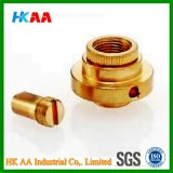 Carbon Steel, Alloy Steel Custom Brass CNC Turning Part for Electrical Equipment, Mechanical Parts