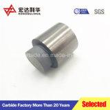 Tungsten Carbide Die for Press Instrument
