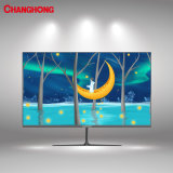 24 Inch P620 Series Changhong LCD Monitor FHD Panel