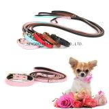 Pet Supply Cheap Bulk Dog Collar