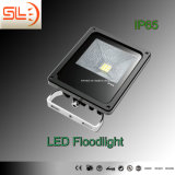 Black CE Approved IP65 LED Outdoor Floodlight