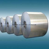Galvanized Steel Coil (Q195/Q235/Q345) --High Quality