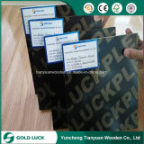 12mm 15mm 17mm 18mm Black Film Faced Plywood