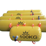 PVC Sausage Lifeboat Proof High Quality Customized Water Filled Weight Bags Manufacture