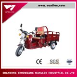 Hybrid Battery Powered/110cc Gasoline Engine Cargo Tricycle