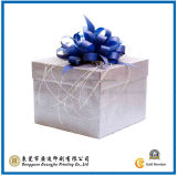 Fashion Cardboard Paper Gift Box for Packing (GJ-Box046)