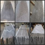 Cheap Price Polished Gang Saw/Rough Granite Slab