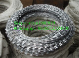 High Security Razor Barbed Wire with Lower Price