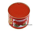 Gino Quality Roco Tomato Paste for Ghana Market, Nigeria and Other African Countries