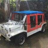 Road Legal 4 Seats or Four Passenger 17.5HP Electric Car/Green E Car/Beach Buggy/Mini Moke/Low Speed Vehicle/Lsv/Nev/Tourist Rental Car ECE/EEC/Coc