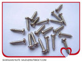 Self Tapping Screw Stainless Steel 304 316 DIN7981 DIN7982, Machine Screws, Self Drilling Screws