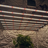 Best Sale OEM Full Spectrum 1000W LED Grow Light for Hydroponics