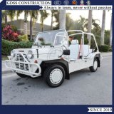 Electric Mini Golf Cart Low E Moke Car Price