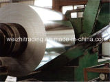 Galvanized/Zinc Price Per Kg Steel Coil with Low Price