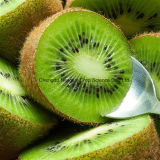 Premium I-Sweet Green Kiwi Fruit for Export