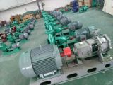 Is65-40-250 Single Stage Single Suction Centrifugal Water Pump
