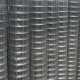 "1/4"" X 1/4"" 0.7mm Hot Dipped Galvanized Welded Wire Mesh Roll"