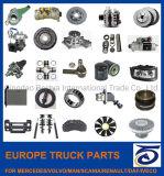 Europe, Japanese Passgenger Auto Car Spare Truck Parts for Mercedes/Volvo/Man/Scania/Renault/Daf/Iveco/ Isuzu/ Mitsubishi/ Hino/Hyundai/Toyota, Nissan/BMW, Audi