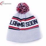 Jacquard Weave Crochet Knit Wholesale Beanie Hat /Bucket Hat