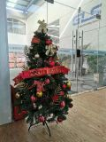Cheap Wholesale Artificial PVC Home Christmas Tree for Christmas Decoration