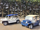 Coastal Eco Green 4 Seats or Four Passenger 17.5HP Electric Car/Green E Car/Beach Buggy/Mini Moke/Low Speed Vehicle/Lsv/Nev/Tourist Rental Car ECE/EEC/Coc