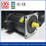 200W Vertical 3 Phase Gear Motor with Brake