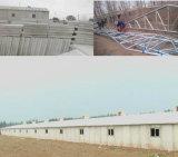 Cheap Prefab Steel Structure Chicken House Farm