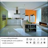 2015 New Material Wooden Grain UV MDF Kitchen Cabinet Door (ZH-6043)