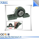 All Sizes of Pillow Block Bearing/Hollow Bearing Units