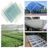 Clear PVC Stripe Roofing Sheets for Greenhouse