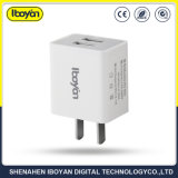 Ce RoHS Mobile Phone American Standard Charger for iPhone