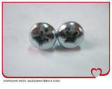 Cross Recessed Round Head Screws (DIN 7985-1990) Stainless Steel 304 316