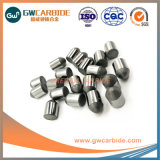 Yg15c, Yg20c Solid Tungsten Carbide Buttons for Mining