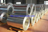 Galvanized Steel in Coil/Sheet with Competitve Price