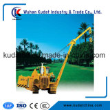 China Brand Tacked Pipe Layer (DGY20-D)