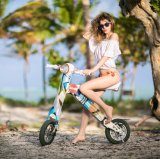 Modika Cheap Lithium Battery Electric Scooter Motorcycle