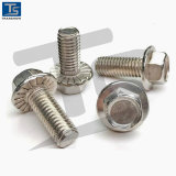 Stainless Steel304/316 Hex Flange Bolt