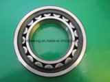 Hot Sale in Poland Nu 330 Cylindrical Roller Bearings