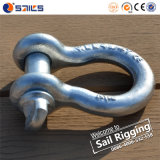 Alloy Steel Pin Anchor C Shackles