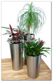 Fo-9001 Tall Tapered Garden Pot Planter with Stainless Steel