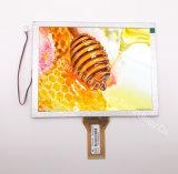 8 Inch TFT LCD 800X600 RGB 50pin 600CD/M2 TFT LCD Display Screen