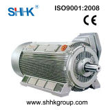 Three Phase Asynchronous Electrical Motor Low Voltage High Output