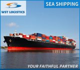 Fast Sea Air Shipping Agent for Low International Shipping Rates to Canada/UK/Germany/Spain/France/USA