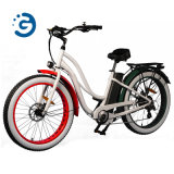 "New Design Rear Drive Motor Electric Bicycle with Suspension Promax 750W 26"" Fat Tire Muse E-Bike"
