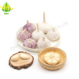 New Crop 4.5cm/5.0cm/5.5cm/6.0cm Normal White Pure Super White Fresh Garlic Suppliers Wholesale Price Chinese Factory Export Mesh Bag and Carton Box Packing