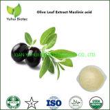 Olive Fruit Extract Crategolic Acid Supplement