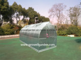 A7 Series Greenhouse for Plants and Flowers (A714)